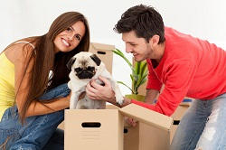 Storage and Removals Service London